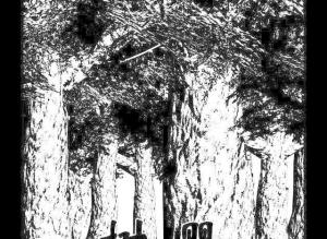 【恐怖漫画 短篇】树樱