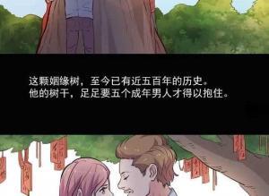 【恐怖漫画 短篇】姻缘树